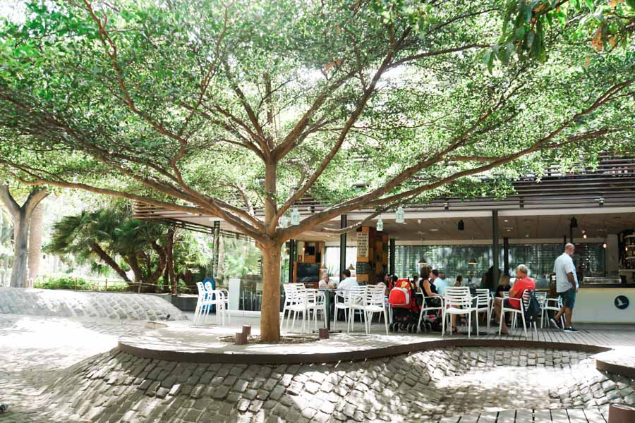 restaurante_tenerife_strasse_park_11